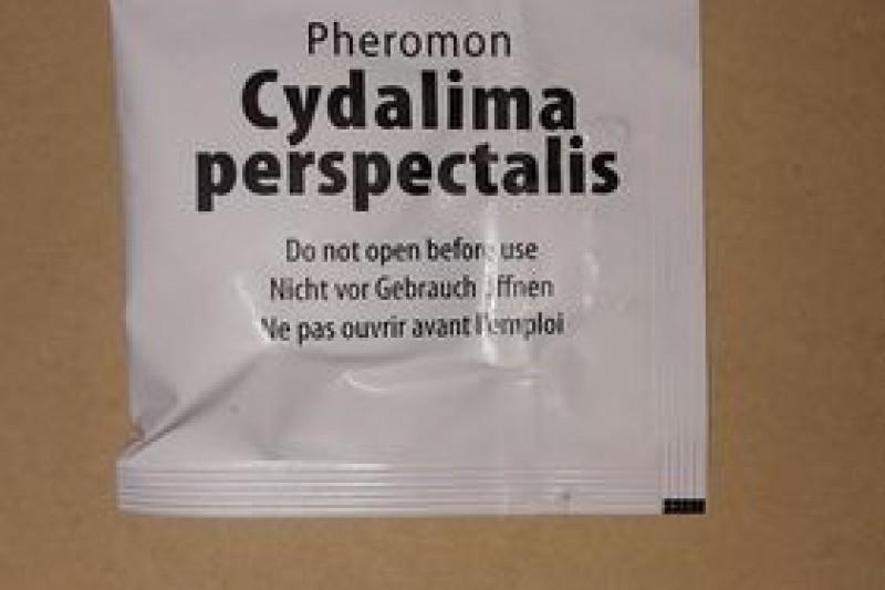 Odparnik feromonowy CDP