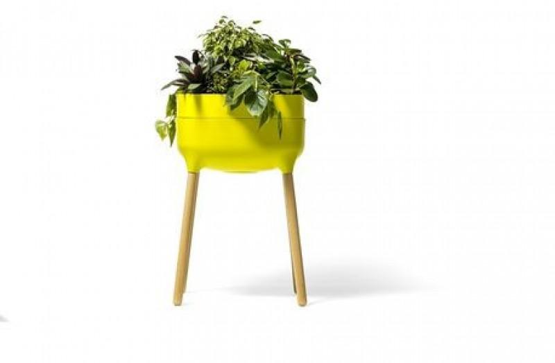 ogródek zielony 01