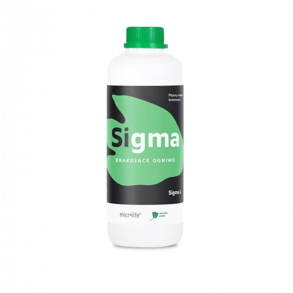 Sigma L 1L