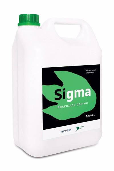 Sigma L 5L