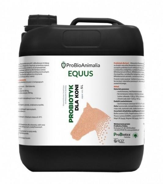 Probiotyk dla koni